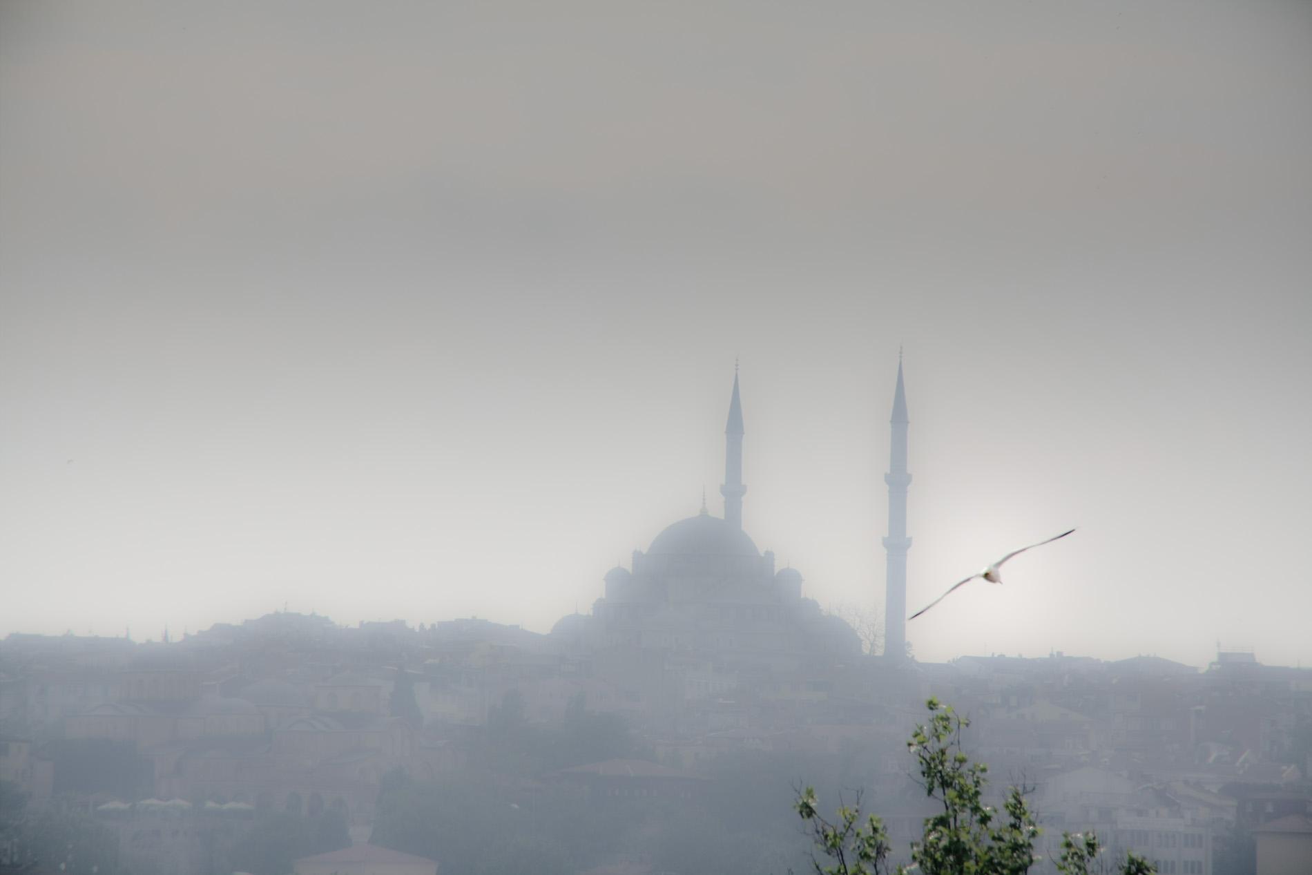 Istanbul #26